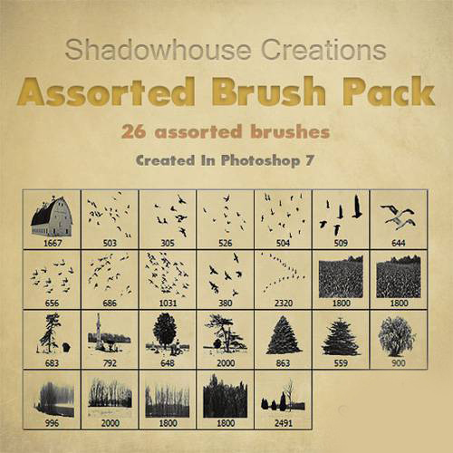 Assorted Brush Pack