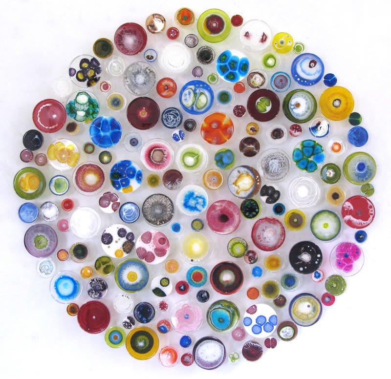Klari Reis: Абстрактные картины в чашках Петри